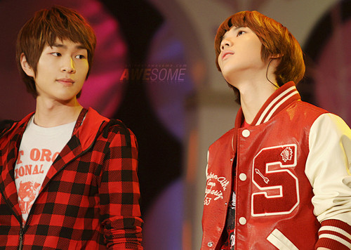 Taemin wallpaper entitled Taemin and Onew