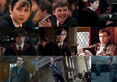 The Evolution of Neville Longbottom