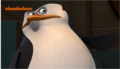 What's Skipper pointing at? - penguins-of-madagascar screencap