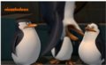What's up with Rico? - penguins-of-madagascar screencap