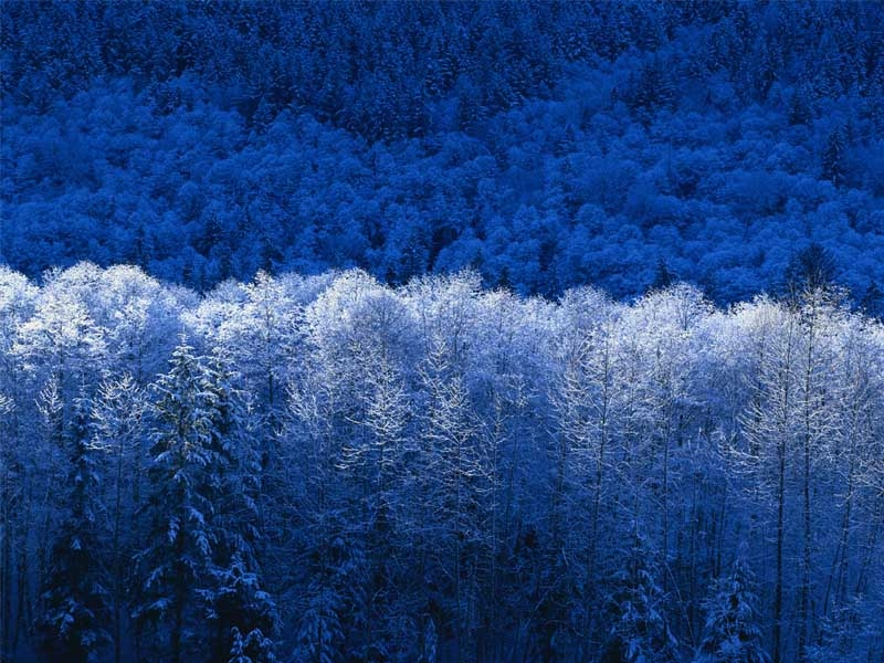 Winter Wallpaper For Windows 7