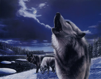 волк Howling