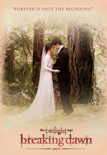 breaking dawn part1