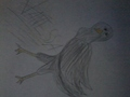 i drewu on paper :P - bird-g photo