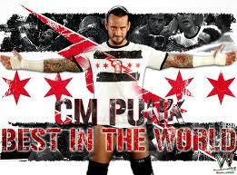 *^*^*CM Punk*^*^*
