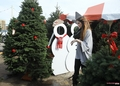 Khloe gets a Christmas tree at the North Pole in Dallas - 20/12/2011 - khloe-kardashian photo