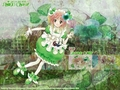 shugo-chara - Amulet Clover wallpaper
