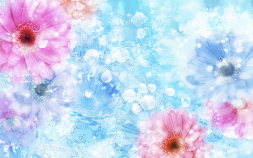 Spring wallpaper containing a bouquet, an african daisy, and a begonia titled Beautiful Spring