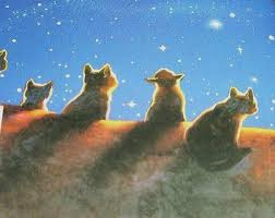 Cats At The Gathering
