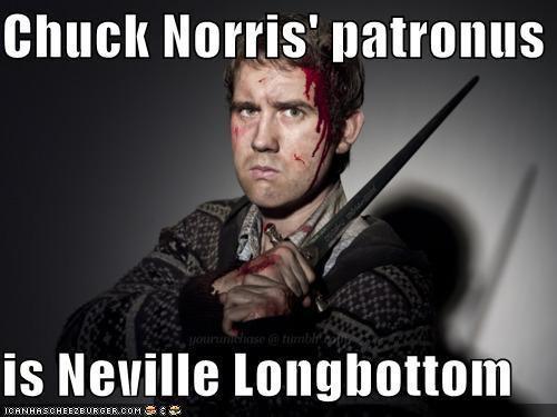 Chuck Norris' Patronus