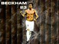 David Beckham <3 - david-beckham wallpaper
