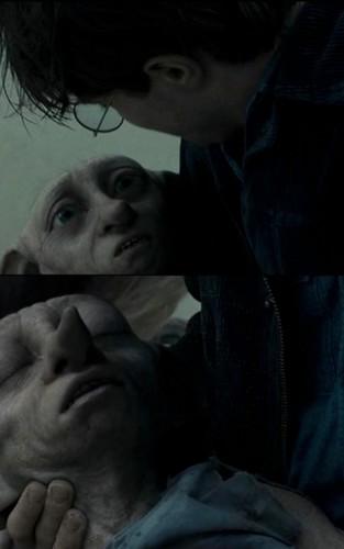 Dobby's Death