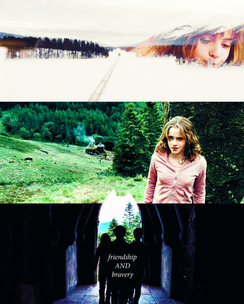 Harry Potter Quotes On Friendship: Harry Potter Friendship Quotes. QuotesGram