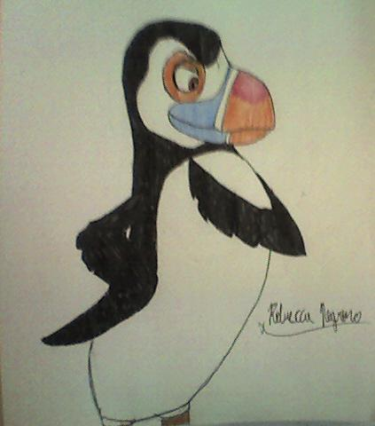 Hans the puffin