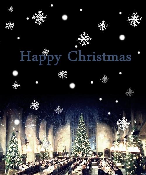 Happy Christmas Harry Potter Photo 27823537 Fanpop