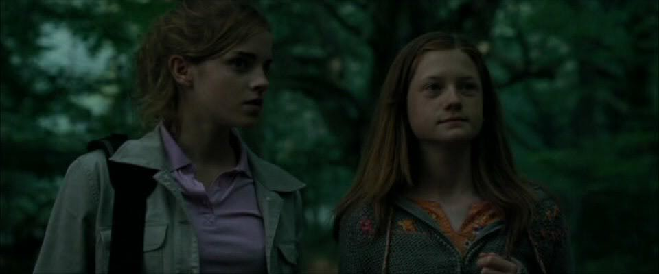 Ginny Weasley And Hermione Granger Granger And Ginny Weasley