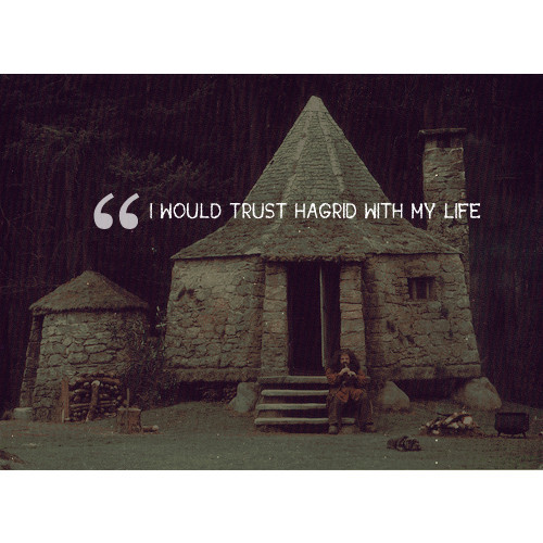 I Would Trust Hagrid With My Life