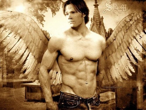 Jared Padalecki wallpaper with a hunk, a six pack, and swimming trunks titled Jared Padalecki