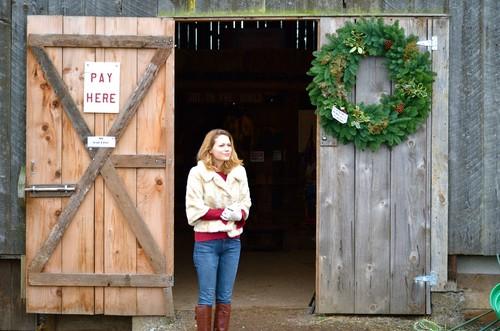 Joy at Рождество дерево farm