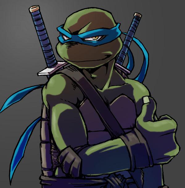 Leonardo Teenage Mutant Ninja Turtles Photo 27864205 Fanpop