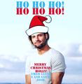 MERRY CHRISTMAS HOLLY!