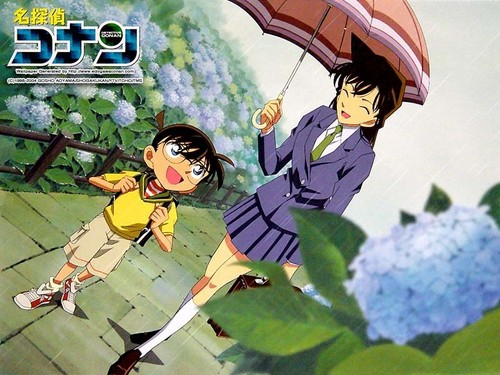 Shinichi Kudo and Ran Mouri wallpaper probably with a parasol titled Ran and Conan