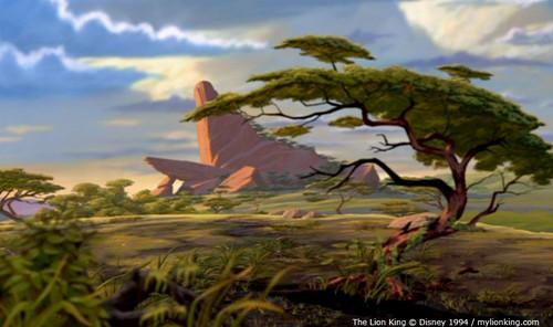 Simba's kingdom