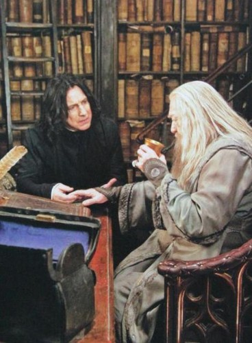 Snape and Albus - severus-snape Photo