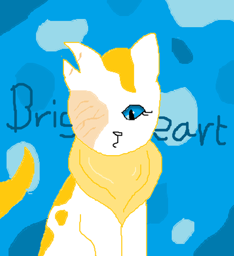 Splotchy Warrior Cats :)