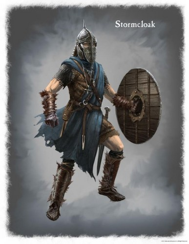 Elder Scrolls V : Skyrim wallpaper possibly with a breastplate, an armor plate, and a surcoat entitled Stormcloak