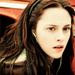 Twilight - katiicullen94 icon