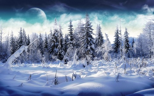 Winter wallpaper with a snowbank, a ski resort, and a ski slope called Wonderful Winter