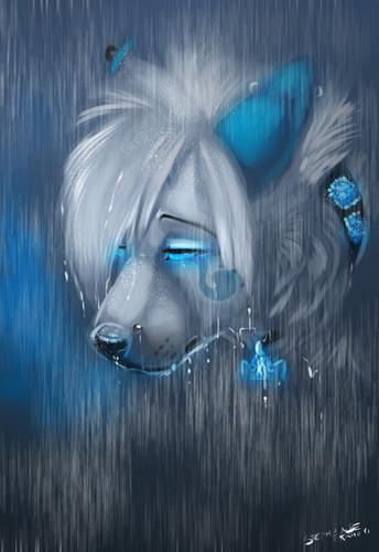 你 can never have felt my pain