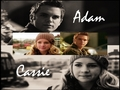 adam and cassie - the-secret-circle-couples wallpaper