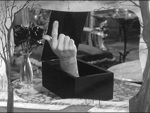 The Addams Family 1964 پیپر وال probably containing a bouquet titled addams family