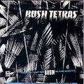 BOOM - The Bush Tetras