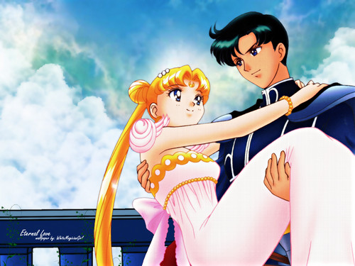 Sailor Moon wallpaper possibly containing tights and a leotard entitled prince&princess