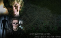 tate - tate-langdon wallpaper