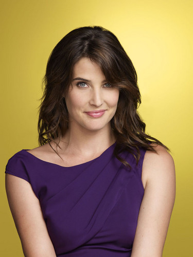 (New/Old) How I Met Your Mother - Season Six Promotional Fotos