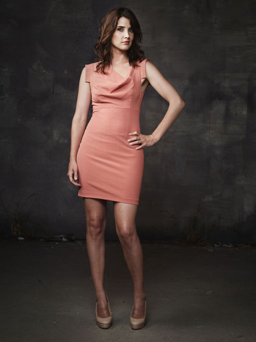 (New/Old) How I Met Your Mother - Season Six Promotional foto