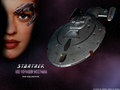 «Seven of Nine» alias «Jeri Lynn Zimmermann Ryan» - star-trek-voyager wallpaper