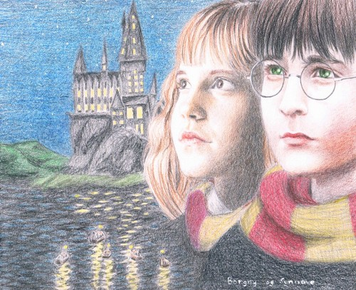 1st 年 Harry and Hermione