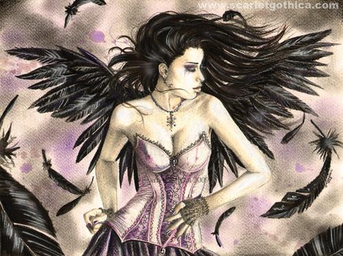 thiên thần ♥