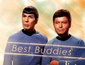 Best Buddies - spock-and-bones photo