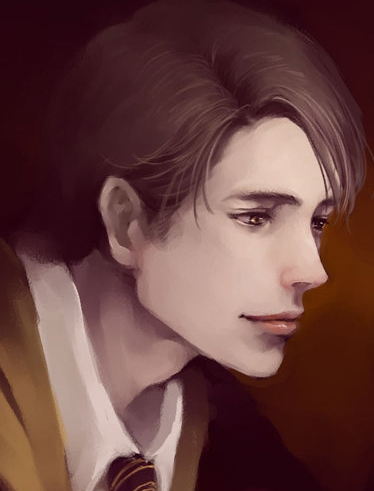 Jeu des dessins HP! ^^ - Page 2 Cedric-Diggory-books-male-characters-27954029-374-491