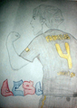 Cesc  - cesc-fabregas fan art