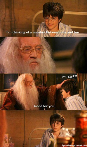 Dumbledore and Harry