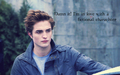 Edward&lt;3 - stefan-salvatore-vs-edward-cullen wallpaper