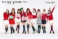 Girls' Generation Vita500 Christmas - girls-generation-snsd photo