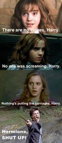Hp LOL!!